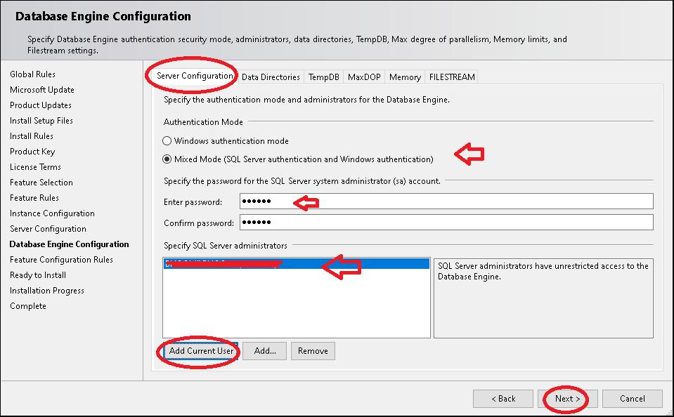 Database Engine Configuration Authentication Mode