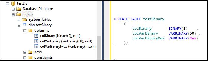 Binary VarBinary and VarBinary max in SQL Server